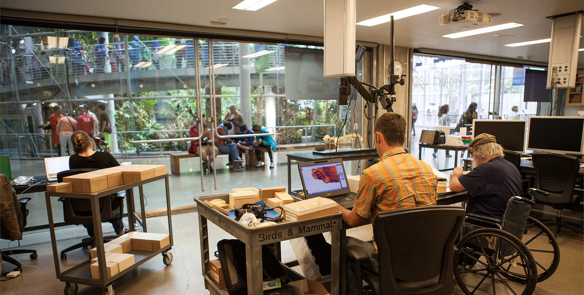 Researchers work in the Project Lab while Academy visitors look on.