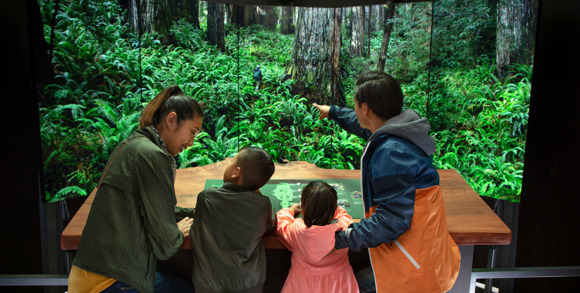 A family explores the interactive redwood ascent feature of the Giants of Land and Sea exhibit