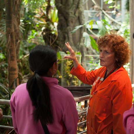 A docent answers a guest question in the Rainforest exhibit.