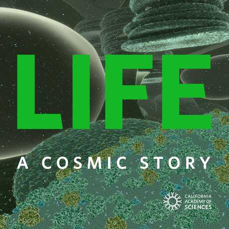 Life: A Cosmic Story poster