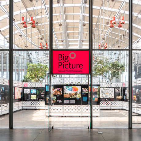 BigPicture exhibit opens at the Academy October 23