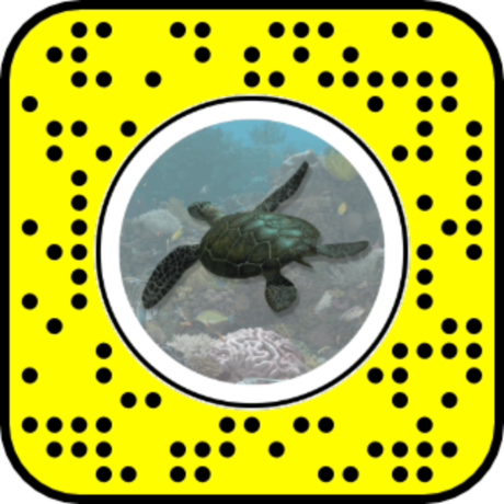 Snapcode for Green Sea Turtle AR lens