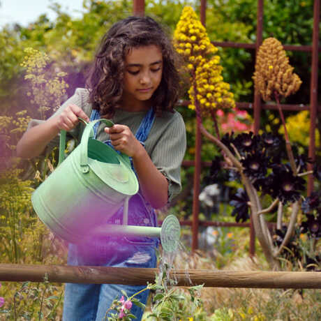 A girl uses a watering can to water a community garden