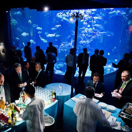Guests at a private event in the Steinhart Aquarium