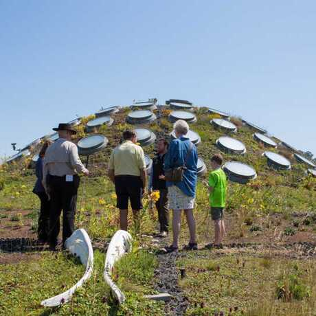 Tour group atop the Academy's Living Roof
