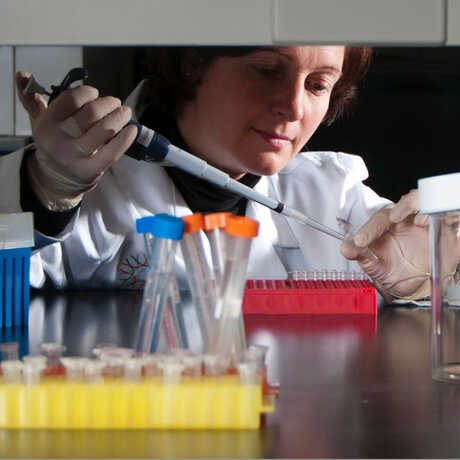Dr. Shannon Bennett in her lab using a pipette