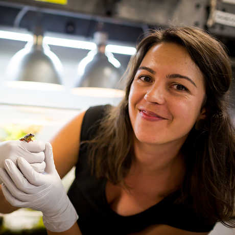 New herpetology curator, Rayna Bell, with frog