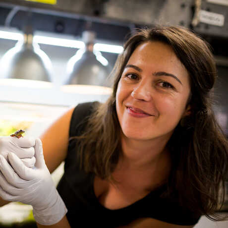 Rayna Bell, PhD, Assistant Curator of Herpetology