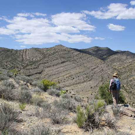Scientist studying the Great Dying in Nevada