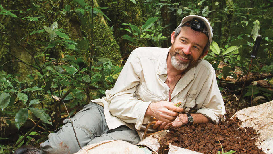 Brian Fisher collecting specimens in the rainforest